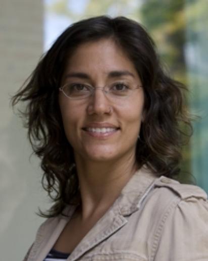 Laurie C. Kohn
