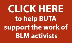 Support the work of BLM activists